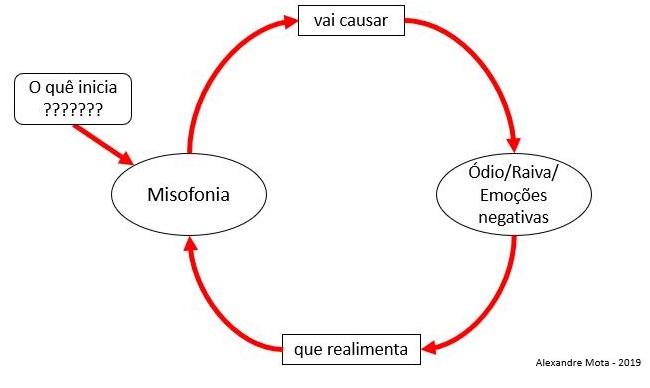 Figura 2 -  causal loop diagram  proposto  para um Modelo Dinâmico da Misofonia em mim